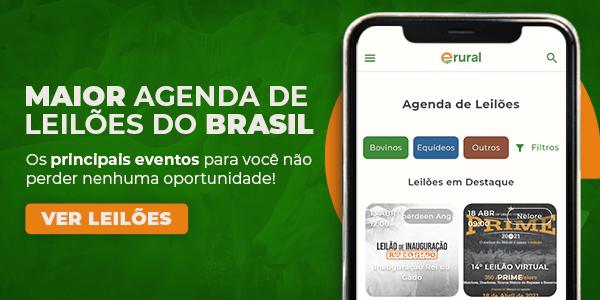 Agenda de leilões erural - A maior agenda de leilões do Brasil